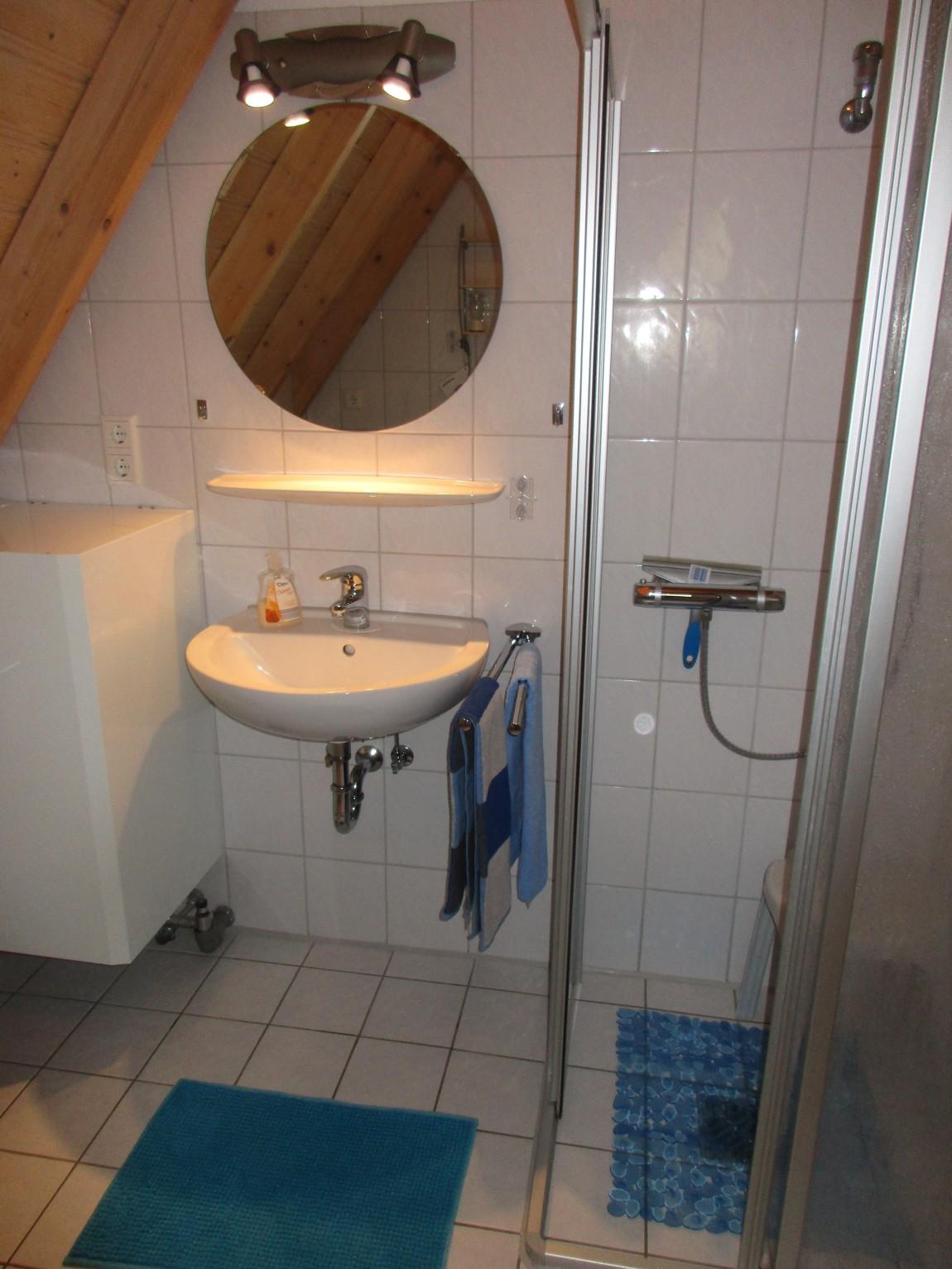 Bad mit Dusche/WC und Waschmaschine im EG
